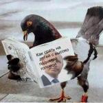 """""""Невольно возникает вопрос: почему Господь терпит этот вопиющий сатанизм на земле Третьего Рима?""""** Сатанисты Путин и Навальный- за убийства детей**Ни одного телеканала.. Так в РФ расставлены приоритеты: прибитые к брусчатке яйца — важнее, чем убитые дети."""
