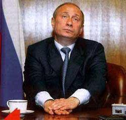 Путин: обложен, словно медведь в берлоге.