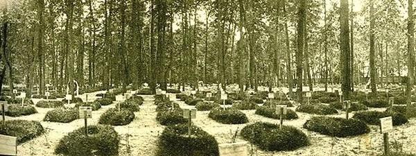Братское кладбище героев Первой Мировой войны под угрозой уничтожения.