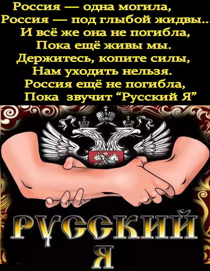 Господа жиды, верните Россию русским – и помиримся: ответ на предложения жида министра Мединского.